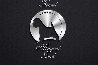 MAGICAL LAND